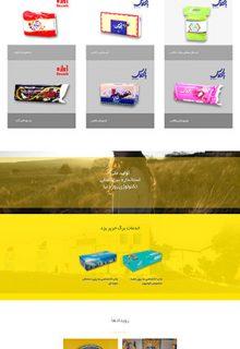 طراحی سایت با کلاس