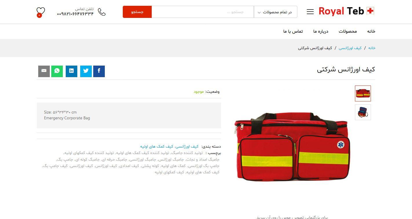 طراحی سایت شرکت طب گستران
